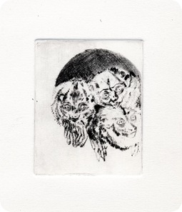 drypoint1show