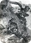 josephwolf-maternalcourage